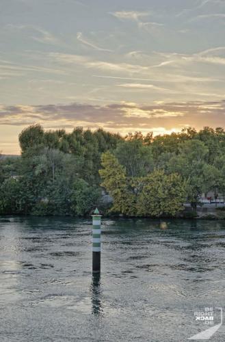 Avignon Fluss