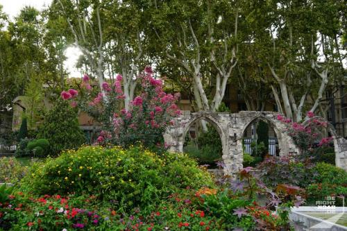 Avignon Park