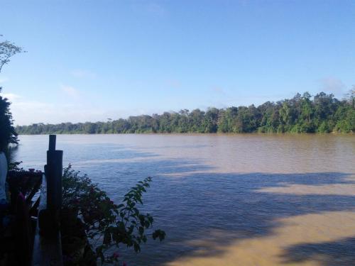 Kinabantang riverside lodge