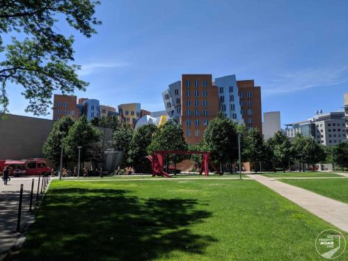 MIT - Gehry Building
