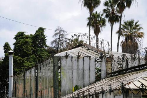 Lissabon Gewächshaus