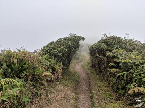 Wanderweg am Mt Pelée