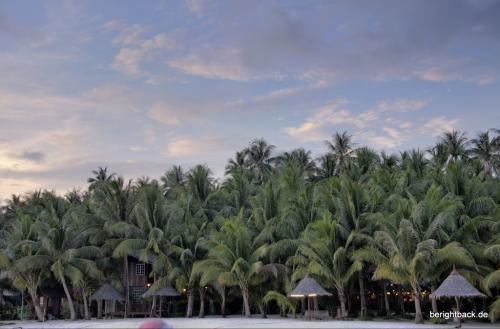 Pulau Mabul Dschungel