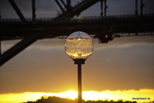 Sydney Sundown im Goldfischglas