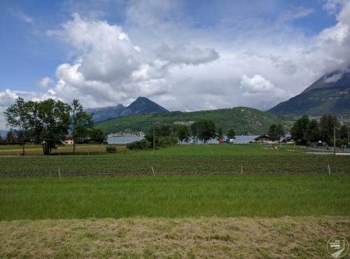 Annecy Erdbeerdfeld