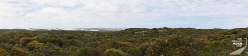 Kangaroo Island Bush