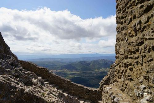 Cinq fils de Carcassonne