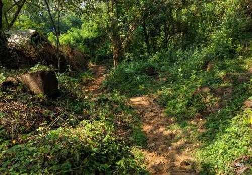 Bhakti Kutir Weg zum Strand