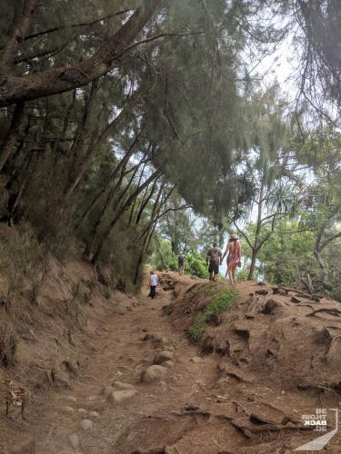 Hiking in Big Island