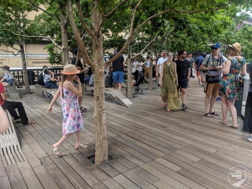 High Line Bäume