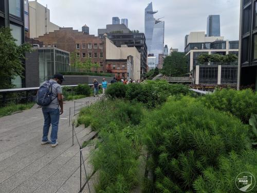 High Line Seitenblumen
