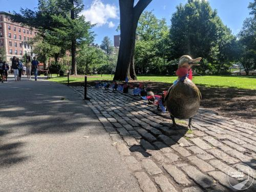 Boston - Bronze Enten