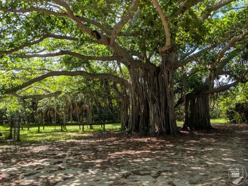 Fort Lauderdale Nationalpark