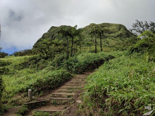 Treppe des Mt Pelée