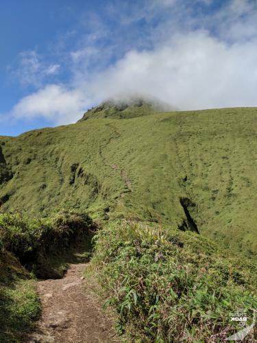 Mt Pelée - Der Weg zum Gipfel