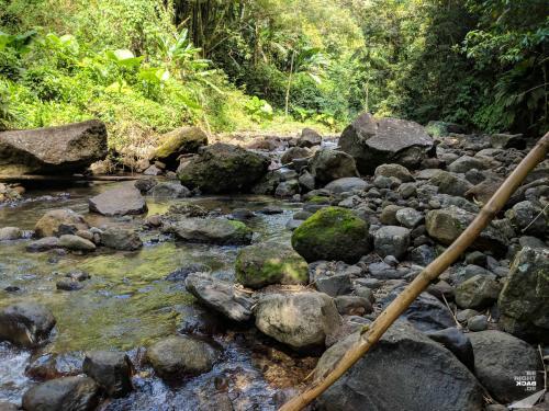 Martinique - Cascade de Didier Trailhead
