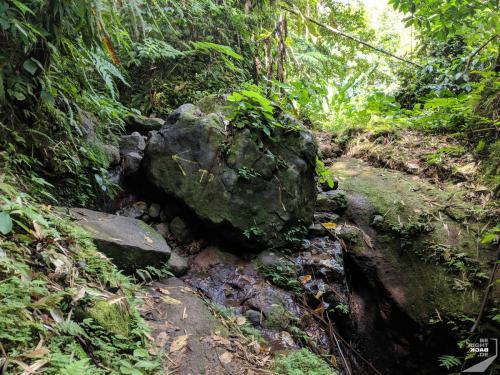 Martinique - Cascade de Didier Blockage