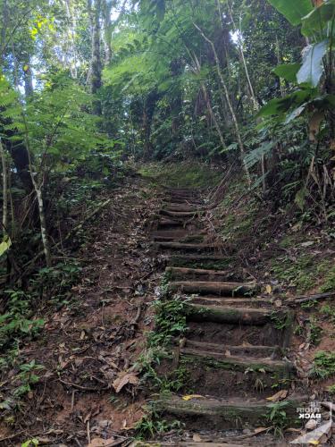 Martinique - Cascade de Didier Steep Steps