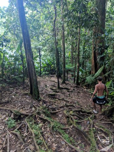 Martinique - Cascade de Didier Race