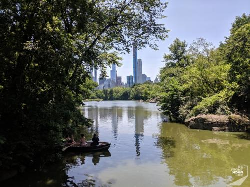 Central Park - The Lake