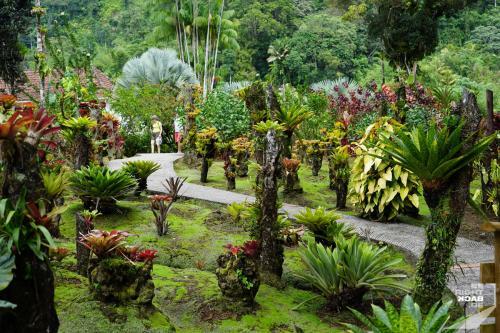 Jardin de Balata - Wegführung