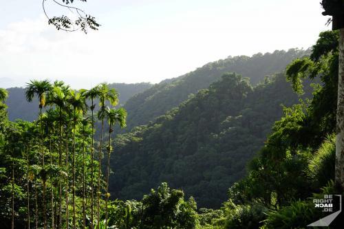 Jardin de Balata - Aussicht ins Tal