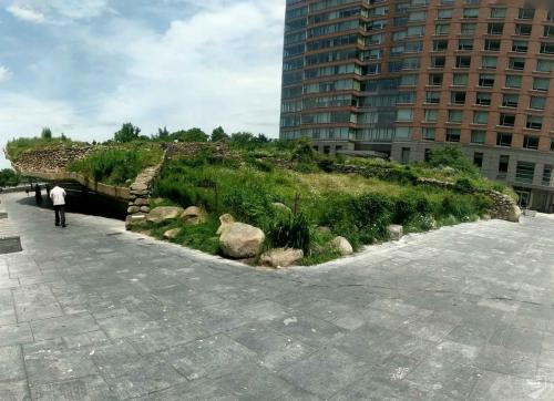 New York - Schiefer Garten