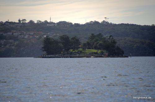Sydney Shark Island