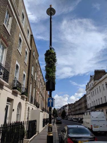 London - Street Greenery